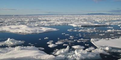 Sebelum 2050, Kutub Utara Diprediksi Alami Musim Panas Tanpa Es